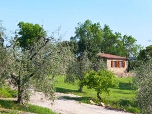 Appartamento il Mandorlo fra gli ulivi