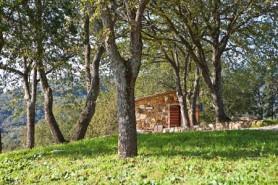 Casa vacanze La Carraia