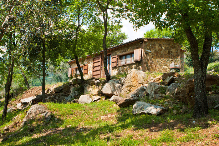The Big Oak holiday home