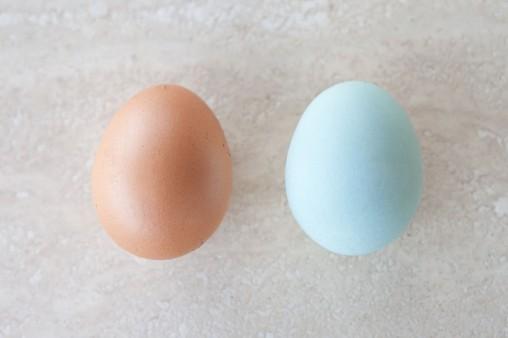 Fotografia di uova di Araucana