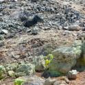 Foto di solfatara nel parco delle Biancane