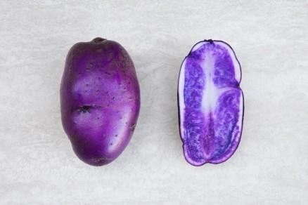Foto di patata blu della Manica