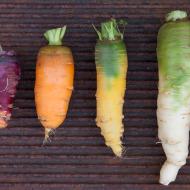 Intervista del Comune di Suvereto sulle verdure antiche di Poggio Diavolino